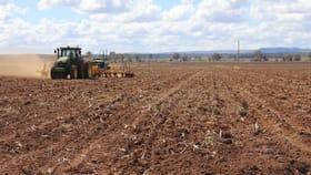 Rural / Farming commercial property for sale at 37 WSF Ramke Road, Mondure Wondai QLD 4606