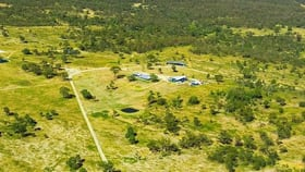 Rural / Farming commercial property for sale at 228 Rockdale Road Karara QLD 4352