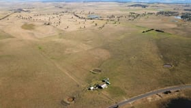 Rural / Farming commercial property for sale at 1095 The Snowy River Way Jincumbilly NSW 2631