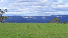 Rural / Farming commercial property sold at Ganbenang NSW 2790