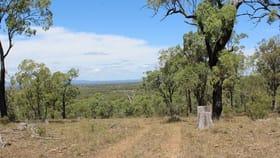 Rural / Farming commercial property for sale at Lot 2172 Morgan Park Road Wildash QLD 4370