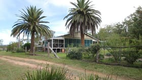 Rural / Farming commercial property for sale at 1128 Woodside Road Tenterfield NSW 2372
