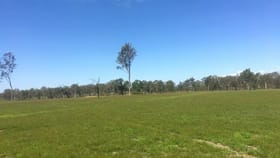 Rural / Farming commercial property for sale at Lot 75 Lyons Road Lake Clarendon QLD 4343