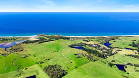 Rural / Farming commercial property for sale at 135 Haxstead Road Central Tilba NSW 2546