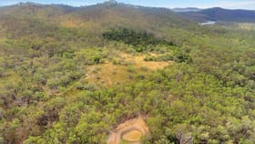 Rural / Farming commercial property for sale at 168 MOUNT STOWE ROAD West Stowe QLD 4680