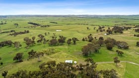 Rural / Farming commercial property for sale at 2584 Range Road Goulburn NSW 2580