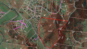 Rural / Farming commercial property for sale at Lot/9 Mary Smokes Creek Road Sandy Creek QLD 4515