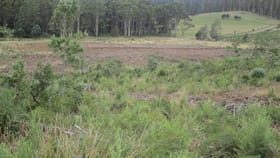 Rural / Farming commercial property for sale at - Lower Beulah Road Lower Beulah TAS 7306