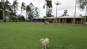 Rural / Farming commercial property for sale at Curra QLD 4570