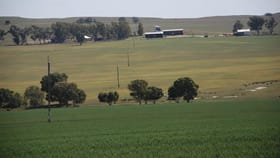 Rural / Farming commercial property for sale at Eneabba WA 6518