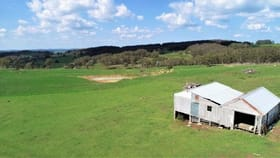 Rural / Farming commercial property for sale at 749 Costellos Road Glencoe NSW 2365