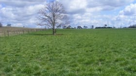 Rural / Farming commercial property for sale at 90 Hewitt Road Glen Innes NSW 2370