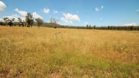 Rural / Farming commercial property for sale at 12704 GOLDEN HIGHWAY Uarbry NSW 2329