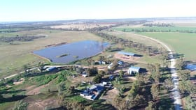 Rural / Farming commercial property for sale at 1723 Wargin Road Barmedman NSW 2668