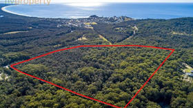 Rural / Farming commercial property for sale at 1004 Scotts Head  Road Way Way NSW 2447