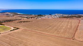 Rural / Farming commercial property for sale at 54 CHALMERS ROAD Port Neill SA 5604