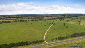 Rural / Farming commercial property for sale at 3500 Thunderbolts Way Uralla NSW 2358