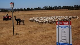 Rural / Farming commercial property for sale at 893 Edward Road Bootenal WA 6532