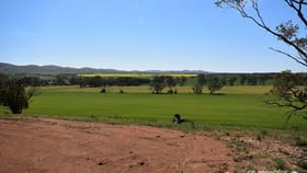Rural / Farming commercial property for sale at Section 89 Glen Roy Road Cambrai SA 5353