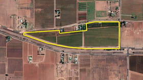 Rural / Farming commercial property for sale at Lot 2 Cowanna Avenue Merbein VIC 3505
