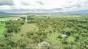 Rural / Farming commercial property for sale at 5553 Kennedy Highway Mareeba QLD 4880