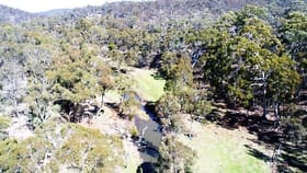 Rural / Farming commercial property for sale at Lot 260 Back Arm Road Middle Arm NSW 2580