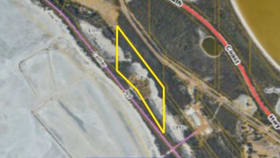 Rural / Farming commercial property for sale at 251/190 Collier Road Pink Lake WA 6450