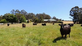 Rural / Farming commercial property for sale at Lot 1551 McIntyre Road Denmark WA 6333