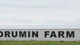 Rural / Farming commercial property for sale at 851 Koorda Kulja Rd Koorda WA 6475