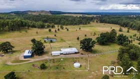 Rural / Farming commercial property for sale at 260 Ainsworth Road Mongogarie NSW 2470
