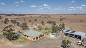 Rural / Farming commercial property for sale at 929 CARDONIS PILLIGA ROAD Wee Waa NSW 2388