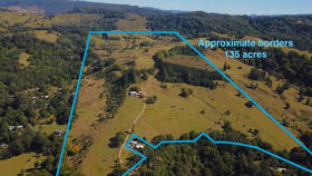 Rural / Farming commercial property for sale at 537 Tuntable Creek Road Tuntable Creek NSW 2480