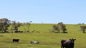 Rural / Farming commercial property for sale at ' Monteray Farms ' Green Valley WA 6330