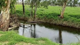Rural / Farming commercial property for sale at Lot 88 Cunningham Highway Oman Ama QLD 4352