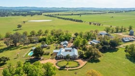 Rural / Farming commercial property for sale at 9985 Hume Highway Holbrook NSW 2644