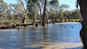 Rural / Farming commercial property for sale at 731 Gonn Road Barham NSW 2732