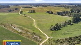 Rural / Farming commercial property for sale at 1131 Reservoir Road Munro VIC 3862