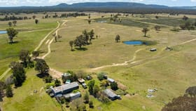 Rural / Farming commercial property for sale at 141 Bernards Road Mudgee NSW 2850