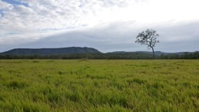 Rural / Farming commercial property for sale at Cooktown QLD 4895