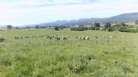 Rural / Farming commercial property for sale at 2074 Lyell Highway Hayes TAS 7140