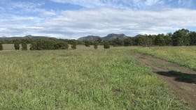 Rural / Farming commercial property for sale at 155 Jacks Rd Gloucester NSW 2422