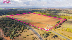 Rural / Farming commercial property for sale at 1559 Cudgel Road Leeton NSW 2705