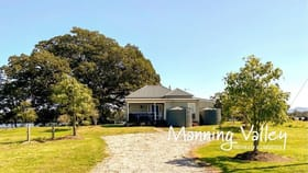 Rural / Farming commercial property for sale at 24 Leslies Lane Mitchells Island NSW 2430