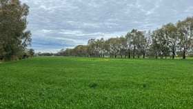 Rural / Farming commercial property sold at 356 Leitchville-Pyramid Road Leitchville VIC 3567
