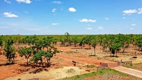 Rural / Farming commercial property for sale at 714 Edith Farms Rd Katherine NT 0850