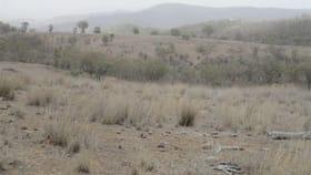 "Rural / Farming commercial property for sale at ""Bellview"" 229 Bundarra Road Barraba NSW 2347"