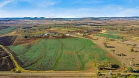 Rural / Farming commercial property for sale at 368 FGG Couper Road Westbrook QLD 4350
