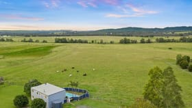 Rural / Farming commercial property for sale at 437 Talga Road Lovedale NSW 2325