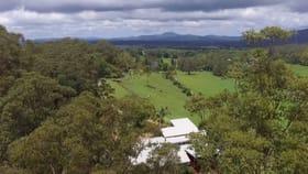 Rural / Farming commercial property for sale at 302 Promised Land Road, Gleniffer Bellingen NSW 2454