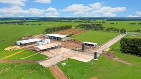 Rural / Farming commercial property for sale at 1150 Carpendeit Bungador Road Swan Marsh VIC 3249
